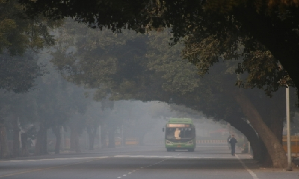 TeluguStop.com - Delhi Residents Wake Up To Coldest Nov Morning In 17 Years