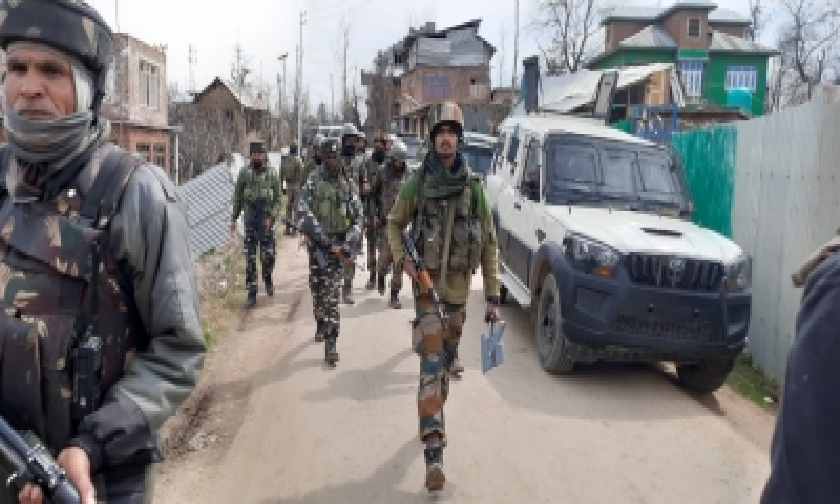 TeluguStop.com - Security Forces Seize Arms, Ammo From Militant Hideout In J&k