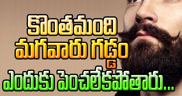 TeluguStop.com - Reason Why Some Men Can't Grow Beard-General-Telugu-Telugu Tollywood Photo Image