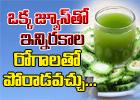 Amazing Health Benefits Of Bitter Gourd And Onion Juice-Telugu Health-Telugu Tollywood Photo Image