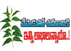 Amazing Health Benefits Of Neem-Telugu Health-Telugu Tollywood Photo Image