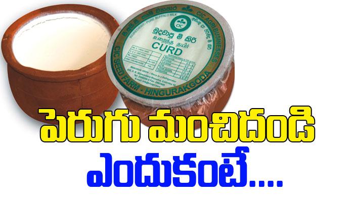 Healthy Benefits Of Curd-Telugu Health-Telugu Tollywood Photo Image