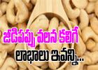 Healthy Benefits You Get From Cashew-Telugu Health-Telugu Tollywood Photo Image