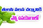 See How Basil Leaves Can Help Your Skin-Telugu Health - తెలుగు హెల్త్ టిప్స్ ,చిట్కాలు-Telugu Tollywood Photo Image