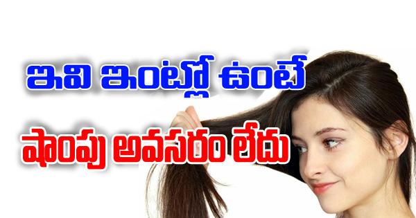 TeluguStop.com - Best Natural Replacements For Hair Shampoo-Telugu Health-Telugu Tollywood Photo Image