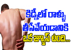 A Special Juice To Dissolve Kidney Stones-Telugu Health - తెలుగు హెల్త్ టిప్స్ ,చిట్కాలు-Telugu Tollywood Photo Image