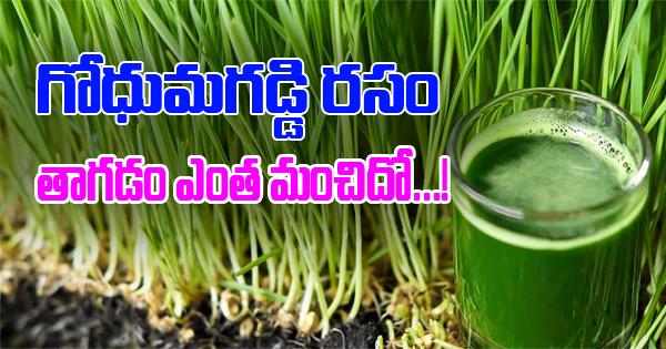 Amazing Benefits Of Wheatgrass Juice-Telugu Health - తెలుగు హెల్త్ టిప్స్ ,చిట్కాలు-Telugu Tollywood Photo Image