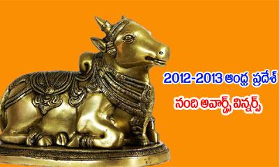 2012 & 2013 AP Nandi Awards Winners-Latest News-Telugu Tollywood Photo Image