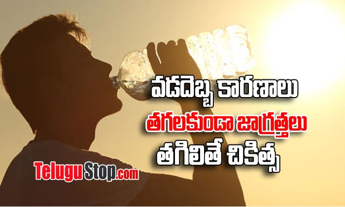 TeluguStop.com - Heat Stroke : Reasons – Remedies – Prevention-Telugu Health - తెలుగు హెల్త్ టిప్స్ ,చిట్కాలు-Telugu Tollywood Photo Image