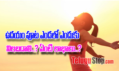 Benefits Of Taking Sunlight In The Morning-General-English-Telugu Tollywood Photo Image