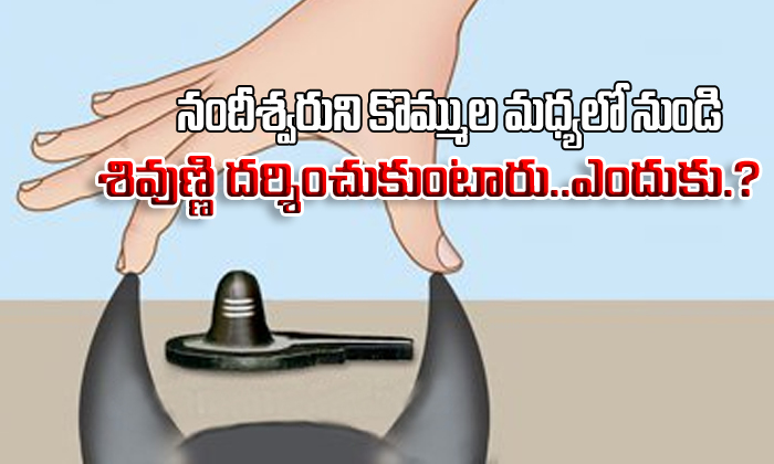 Why We See Lord Shiva From Bull Horns Why Do We See Lord Shiva