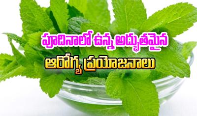 Super 5 Health Benefits Of Mint Leaves Or Pudina-Telugu Health - తెలుగు హెల్త్ టిప్స్ ,చిట్కాలు-Telugu Tollywood Photo Image