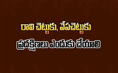 TeluguStop.com - రావి చెట్టు, వేప చెట్టుకు ప్రదక్షిణలు ఎందుకు చేయాలి-Devotional-Telugu Tollywood Photo Image