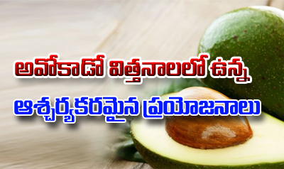 Health Benefits Of Eating Avocado Seeds-Telugu Health - తెలుగు హెల్త్ టిప్స్ ,చిట్కాలు-Telugu Tollywood Photo Image