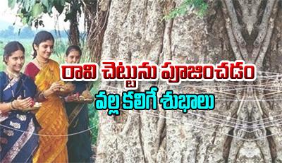 రావి చెట్టును పూజించడం వల్ల కలిగే శుభాలు-Devotional-Telugu Tollywood Photo Image