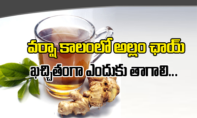 Why You Should Drink Ginger Tea In Rainy Season-Telugu Health-Telugu Tollywood Photo Image