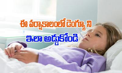 ఈ వర్షాకాలం డెంగ్యూ ని ఇలా అడ్డుకోండి-Telugu Health-Telugu Tollywood Photo Image