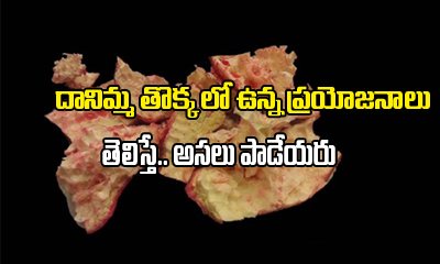 దానిమ్మ తొక్కలో ఉన్న ప్రయోజనాలు తెలిస్తే…తొక్క అసలు పాడేయరు-Telugu Health-Telugu Tollywood Photo Image