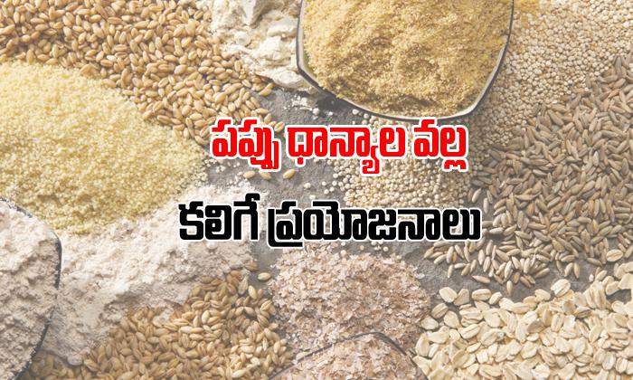 పప్పు ధ్యాన్యాలవల్ల కలిగే ప్రయోజనాలు-Telugu Health-Telugu Tollywood Photo Image