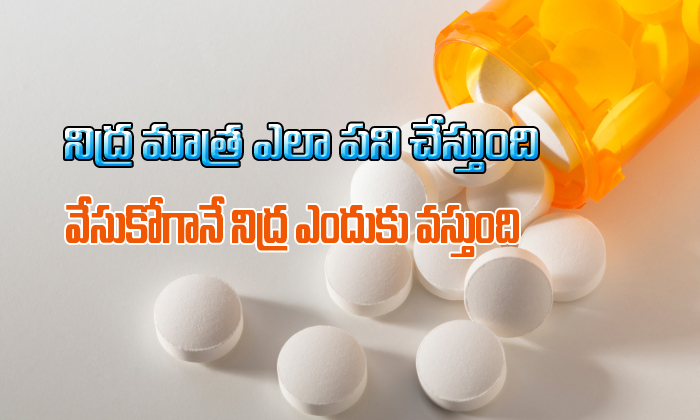 TeluguStop.com - నిద్ర మాత్ర ఎలా పనిచేస్తుంది వేసుకోగానే నిద్ర ఎందుకు వస్తుంది-Telugu Health-Telugu Tollywood Photo Image