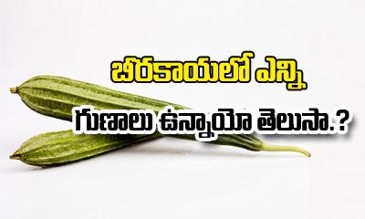 బీరకాయతో కామెర్లకు చెక్ పెట్టండి ఇలా…-Telugu Health - తెలుగు హెల్త్ టిప్స్ ,చిట్కాలు-Telugu Tollywood Photo Image