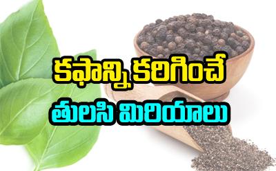 కఫాన్ని కరిగించే..తులసి మిరియాలు-Telugu Health - తెలుగు హెల్త్ టిప్స్ ,చిట్కాలు-Telugu Tollywood Photo Image