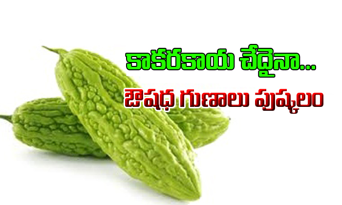 Amazing Benefits Of Bitter Gourd-Telugu Health-Telugu Tollywood Photo Image