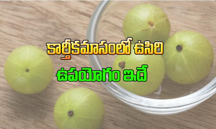 Amla Advantages In Kaartheekamaasam