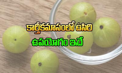 కార్తీకమాసంలో ఉసిరి ఉపయోగం ఇదే-Devotional-Telugu Tollywood Photo Image