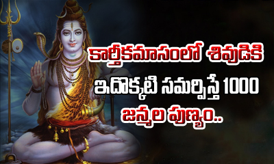 Importance Of Tulasi Pooja In Kartika Masam-Devotional-Telugu Tollywood Photo Image