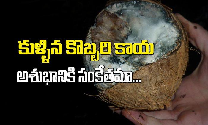 Spoiled Coconut In Puja ...Is It A Bad Sign??-