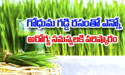 TeluguStop.com - Wheatgrass Health Benefits-Telugu Health - తెలుగు హెల్త్ టిప్స్ ,చిట్కాలు-Telugu Tollywood Photo Image