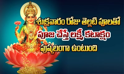 Flowers Offered To Hindu Gods And Goddesses In Pooja-Devotional-Telugu Tollywood Photo Image