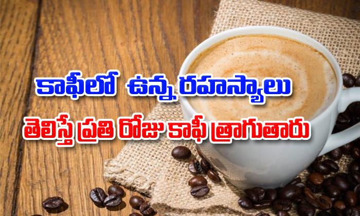 TeluguStop.com - Health Benefits Of Drinking Coffee Everyday-Telugu Health - తెలుగు హెల్త్ టిప్స్ ,చిట్కాలు-Telugu Tollywood Photo Image
