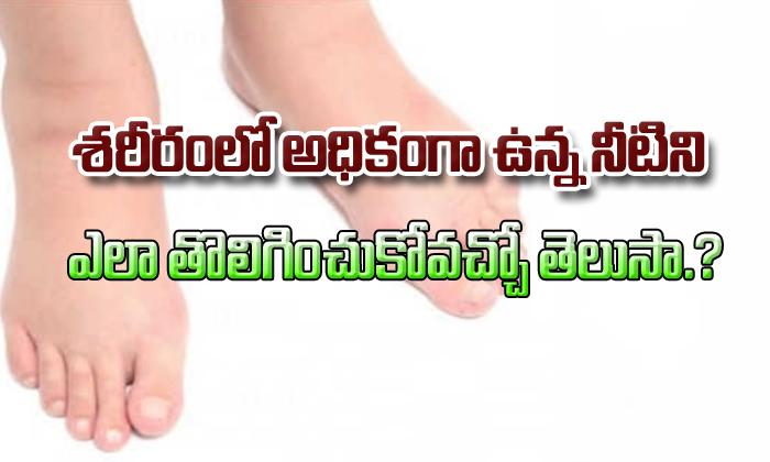 TeluguStop.com - Home Remedies For Water Retention In Body (Edema)-Telugu Health - తెలుగు హెల్త్ టిప్స్ ,చిట్కాలు-Telugu Tollywood Photo Image