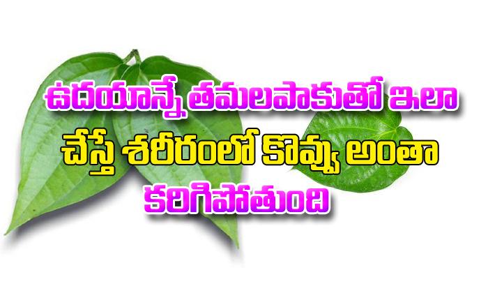 Betel Leaf Remedies For Weight Loss-Telugu Health - తెలుగు హెల్త్ టిప్స్ ,చిట్కాలు-Telugu Tollywood Photo Image