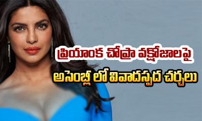 Priyanka Chopra's Cleavage Becomes Hot Topic In Assembly-General-English-Telugu Tollywood Photo Image