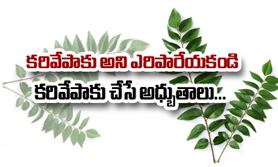 Curry Leaves And Its Amazing Benefits For Your Hair-Telugu Health Tips-Telugu Tollywood Photo Image