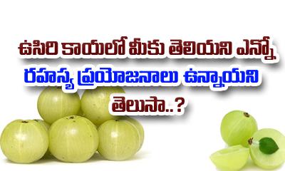 Gooseberry (Usirikaya) Health Benefits-Telugu Health - తెలుగు హెల్త్ టిప్స్ ,చిట్కాలు-Telugu Tollywood Photo Image
