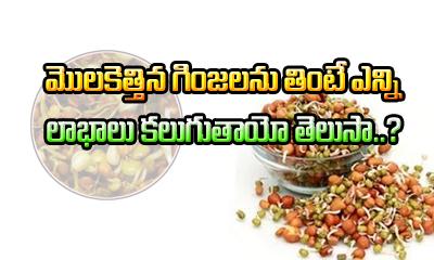 Health Benefits Of Sprouts Telugu-Telugu Health - తెలుగు హెల్త్ టిప్స్ ,చిట్కాలు-Telugu Tollywood Photo Image