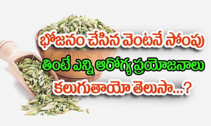 భోజనం చేసిన వెంటనే సోంపు తింటే ఎన్ని ఆరోగ్య ప్రయోజనాలు కలుగుతాయో తెలిస్తే షాక్ అవుతారు-Telugu Health-Telugu Tollywood Photo Image
