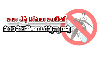 TeluguStop.com - ఇలా చేస్తే దోమలు ఇంటిలో నుంచి పారిపోతాయి…రమ్మన్నా రావు-Telugu Health-Telugu Tollywood Photo Image