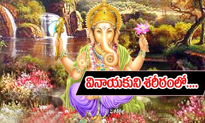 Wich Part Is Best In Lord Vinayaka