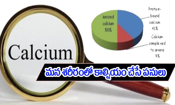క్యాల్షియం మన శరీరంలో ఎన్ని కీలకమైన పనులను చేస్తుందో తెలుసా-Telugu Health-Telugu Tollywood Photo Image