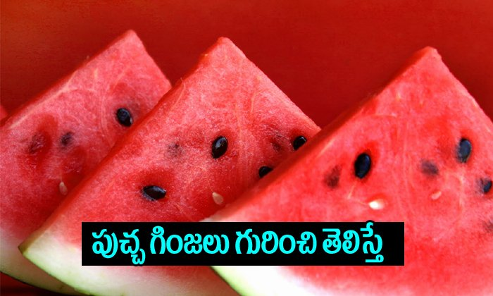 TeluguStop.com - Watermelon Seeds Health Benefits