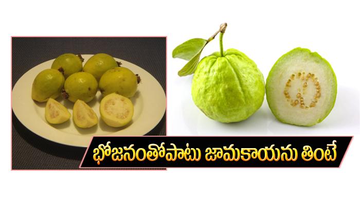 భోజనంతో పాటు జామకాయను తింటే ఏమవుతుందో తెలుసా-Telugu Health-Telugu Tollywood Photo Image