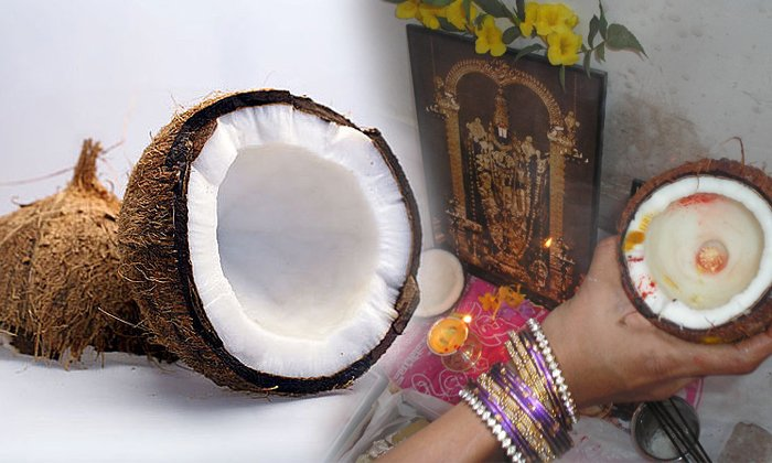 Unknown Facts About Indian Coconut