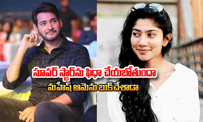 TeluguStop.com - Sai Pallavi Selected For Mahesh Babu 26th Movie