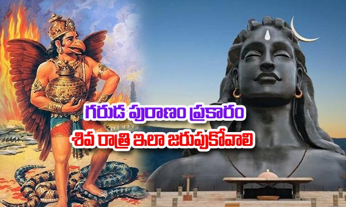 You Must Know About Festival Maha Shivaratri As Per Garuda Puranam