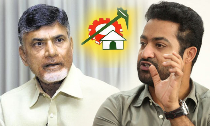 CM Chandrababu Not Interested To Promote Junior NTR-